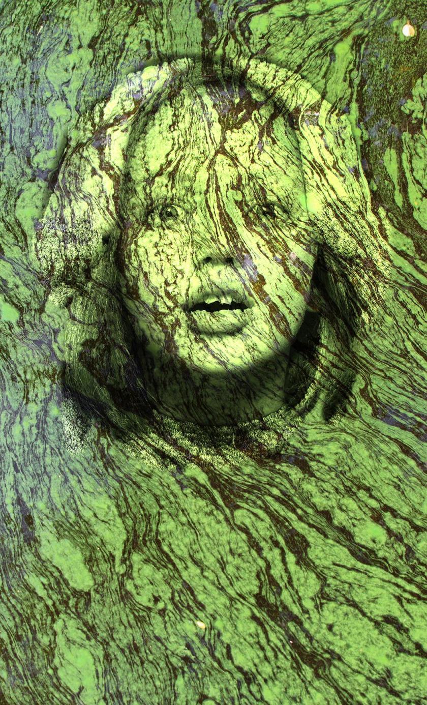 algae girl(1)